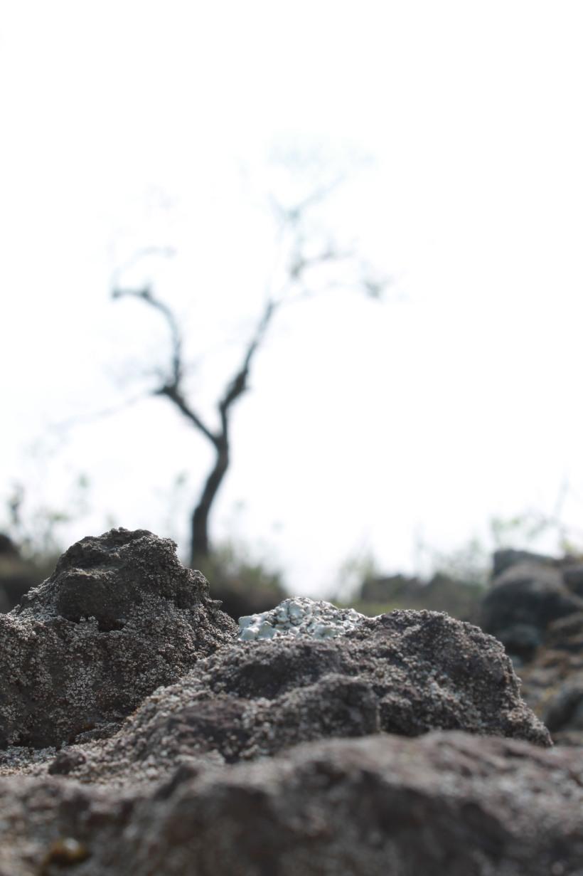 piedras igneas
